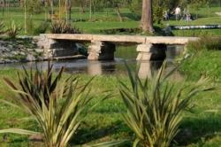 Famalicão quiere crear corredores naturales en los márgenes de los ríos