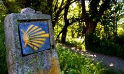 El Camino Portugués se dispara al 21% del total de los peregrinos