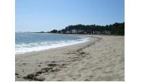 Eurorregión obtiene 197 banderas azules para sus playas